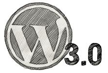 wordpress 3.0 logo