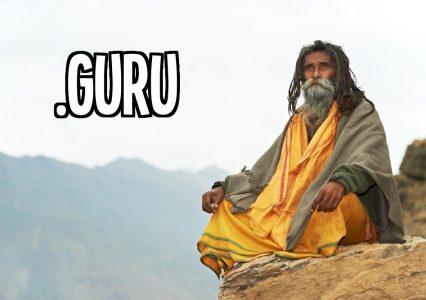 Pierwsze domeny .guru już w sieci. Skusiło się nawet Apple