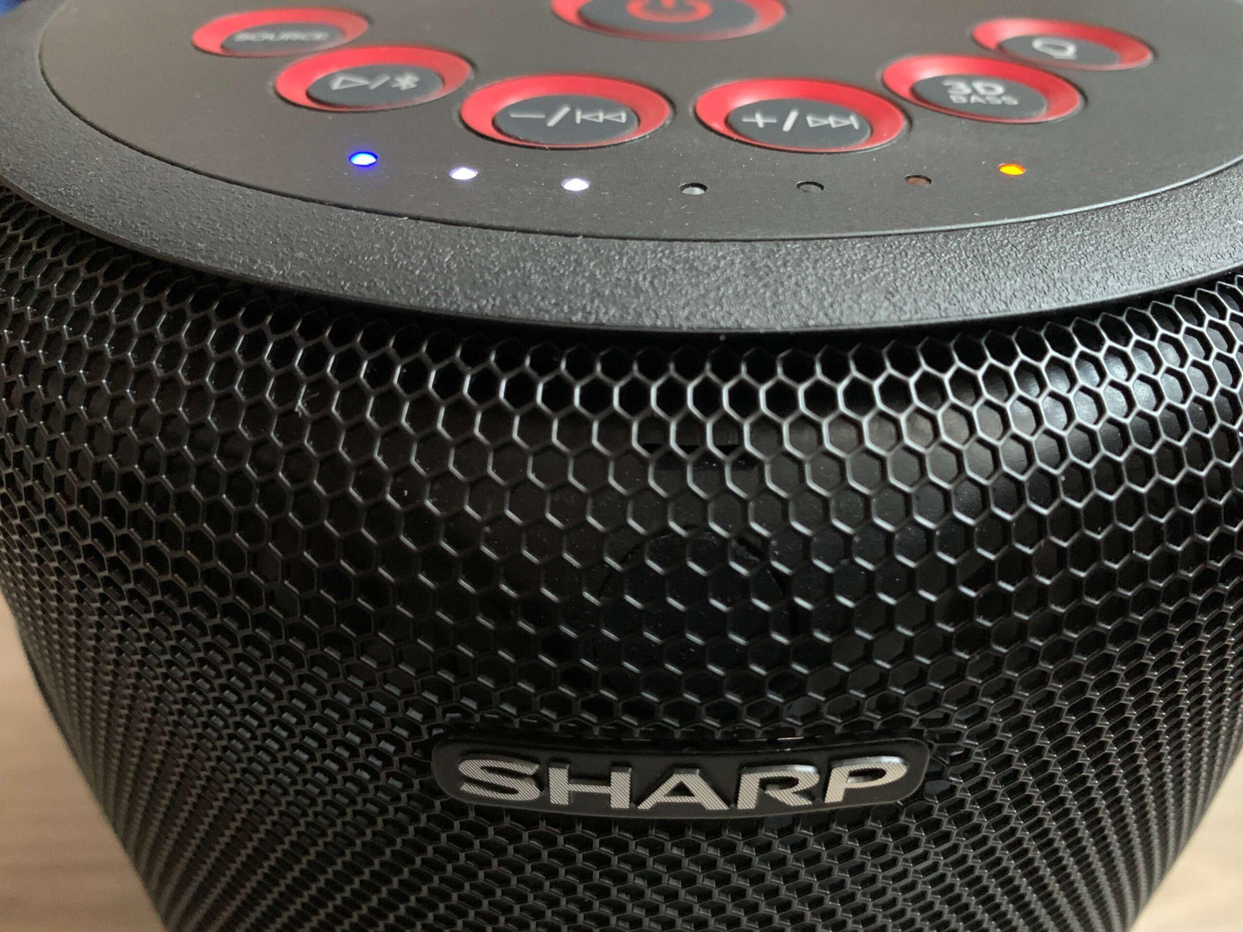 Sharp PS-919 to głośnik wykonany całkiem dobrze