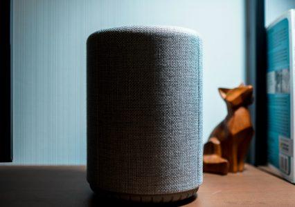 Głośnik zaprojektowany po to, aby do niego mówić. Test Audio Pro G10