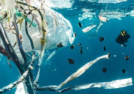 To Was zaskoczę: dobry plastik może istnieć, serio! Powstał w Wuhan